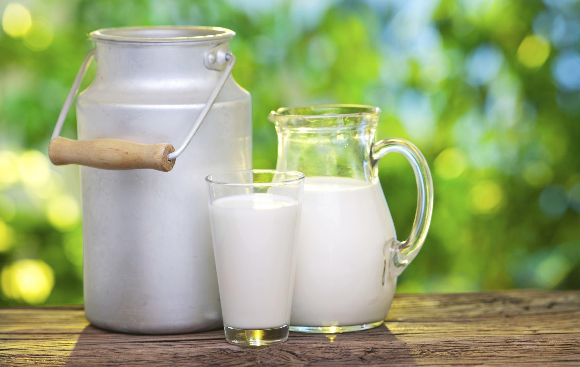 Quote latte, Alleanza delle Cooperative Agroalimentari: strumenti assicurativi per tutelare le nostre imprese