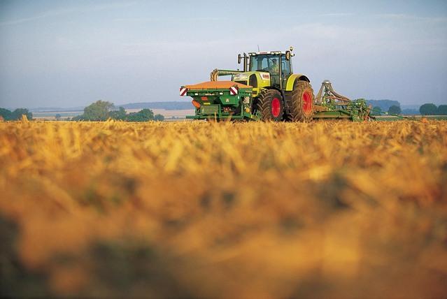Ismea: il bando per l'insediamento dei giovani in agricoltura